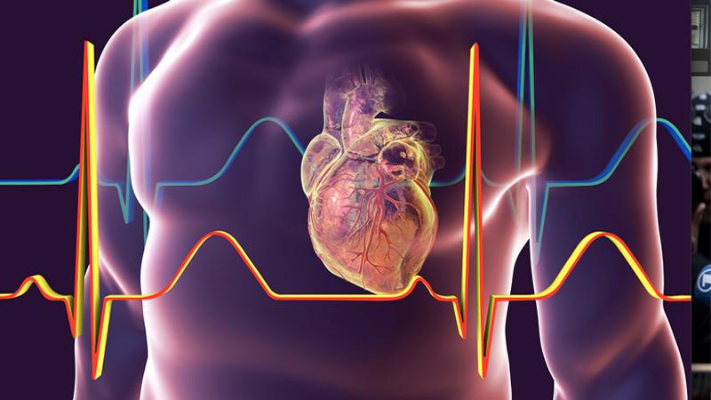 heart298174189489.jpg